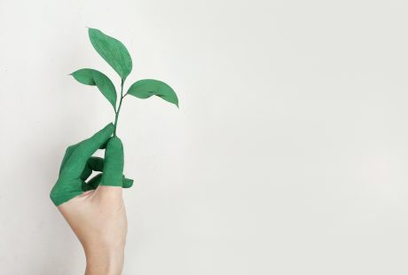 3 tips voor een duurzame inrichting